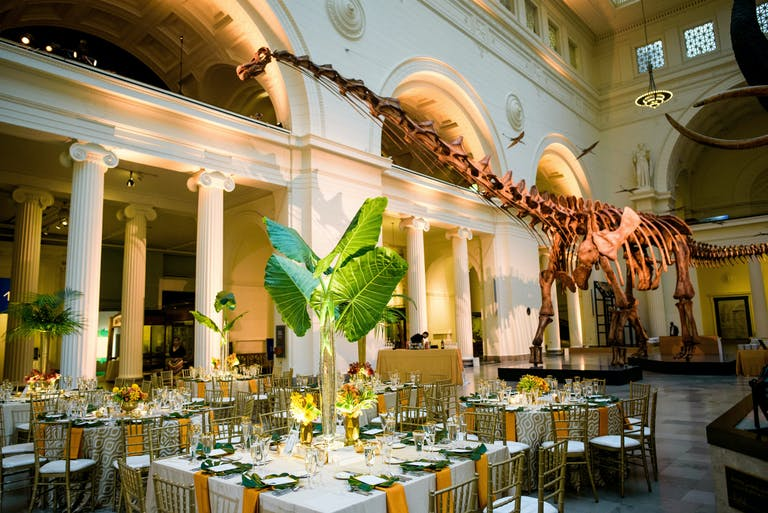 Green and Gold Wedding Reception at Stanley Field Hall in Field Museum   PartySlate