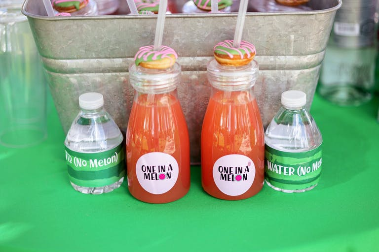 Birthday Kids Party Watermelon-Themed Beverages | PartySlate