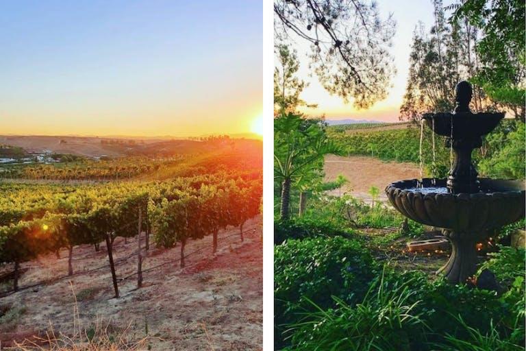 Falkner Winery in Temecula, CA   PartySlate