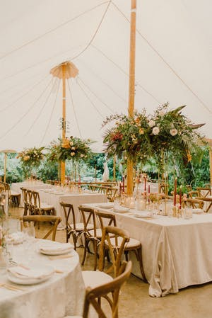 Pole tent wedding with greenery   PartySlate