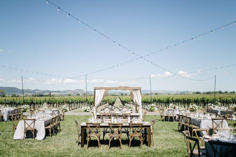 Rustic Outdoor Vineyard Wedding at Tyge William Cellars in Sonoma, CA   PartySlate