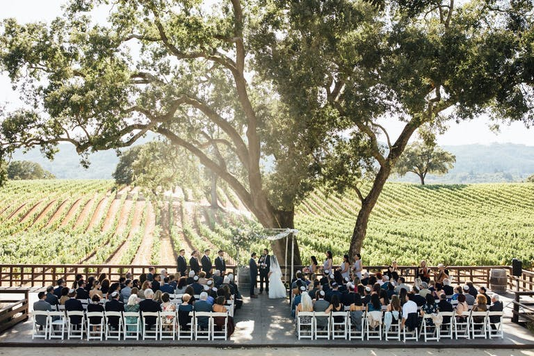 Wedding ceremony under the shade of a French Picholine tree overlooking vast California vineyards at B.R. Cohn Winery in Glen Ellen, CA   PartySlate