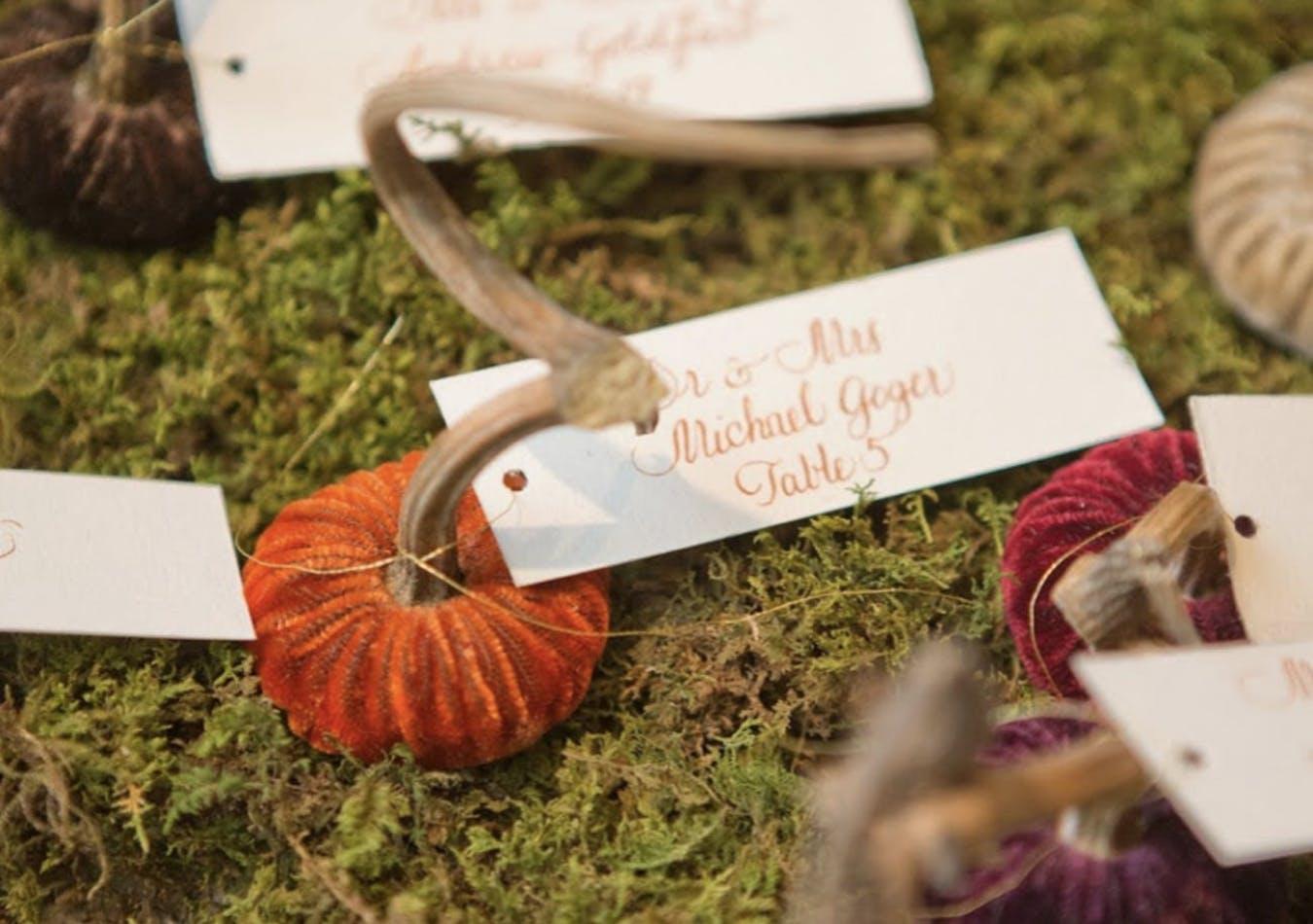 Velvet pumpkin fall wedding escort cards   PartySlate